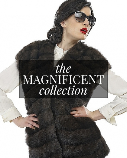 THE MAGNIFICENT COLLECTION